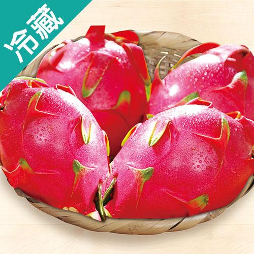 火龍果3粒 白肉  400g±10% 粒