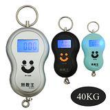 【無敵王】電子家用吊掛式拉力秤 IK-H401