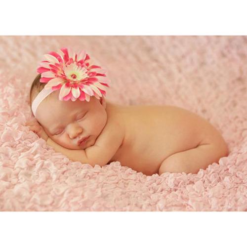 美國Jamie Rae 100%純棉髮帶_淡粉細髮帶+粉覆盆子雛菊 (JRFBD07)