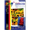 彩之舞 防水 專業級 亮面 4x6吋 高畫質數位相紙【HY-B63】200張