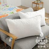 AGAPE亞加‧貝《100%水鳥羽毛舒柔立體羽絨枕》☆台灣製造☆飯店專用,給您度假般的好品質