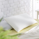 MONTAGUT-3D防蹣透氣健康枕 / 2入