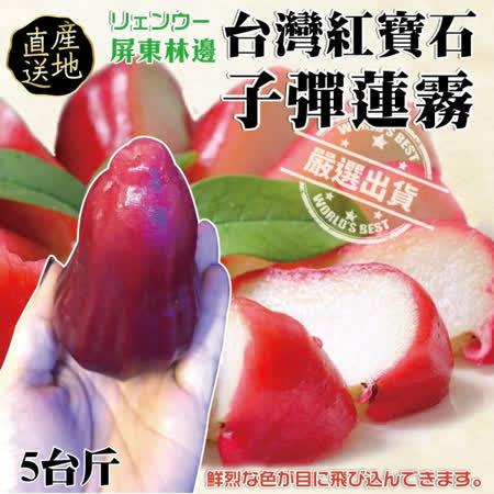 【果之蔬】嘉义黑霸王子弹莲雾(3斤±10%/约18~20颗)
