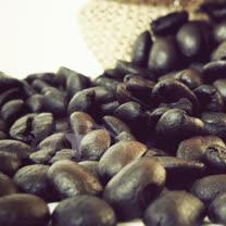 【Gustare caffe】精選東帝汶咖啡豆(1磅)(任選)