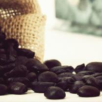 【Gustare caffe】精選吉馬咖啡豆(1磅)