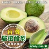 【果之蔬】台灣酪梨2台斤±10%