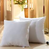 挪威森林 高彈力透氣100%舒綿抱枕專用枕芯/靠墊枕芯 (適用50*50CM抱枕套)
