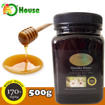 【Organic House】MGO 170+ 中度活性麥蘆卡蜂蜜(500g)