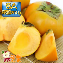 果之家 產地特選高山摩天嶺甜柿12入禮盒(8A,單顆7-8兩)