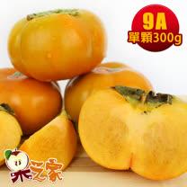 果之家 產地特選高山摩天嶺甜柿8入禮盒(9A,單顆8-9兩)