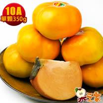 果之家 產地特選高山摩天嶺甜柿8入禮盒(10A,單顆9-10兩)