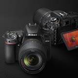 Nikon D7500 + AF-P DX 70-300mm f/4.5-6.3G ED VR (限量)(公司貨)