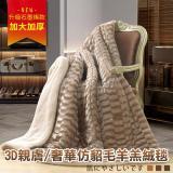 【Betrise兩款選一】2017新發售  3D親膚/奢華仿貂毛羊羔絨毯180*210(激厚加大升級款)