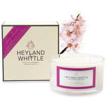 H&W英倫薇朵 櫻花三蕊香氛燭 480g
