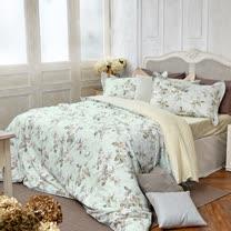 BBL娜塔莎100%精梳棉.印花加大兩用被床包組