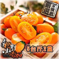 家購網嚴選<br>美濃橙蜜香小蕃茄5斤X2盒