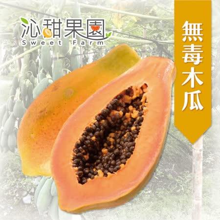 《沁甜果園SSN》台農二號無毒木瓜2顆裝(2.5台斤/箱,共2箱)
