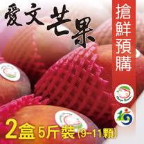 芒果好吃屏東枋山<br/>愛文芒果5斤(9~11顆)X2箱