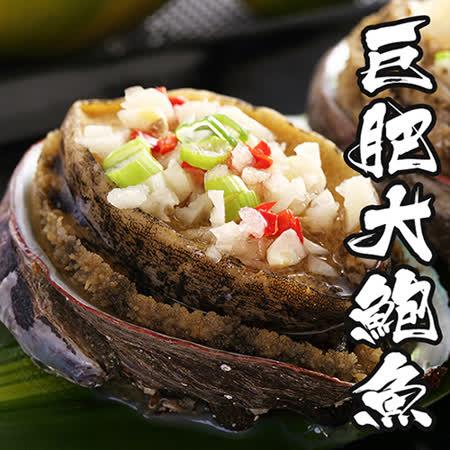 【海鲜王】巨肥鲜美大鲍鱼 *2包组(800g/10颗/包)