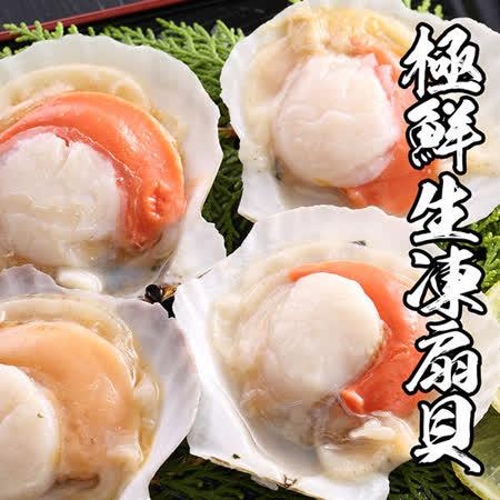 【海鲜王】极鲜生冻半扇贝 *4包组(7-10颗/500g/包)