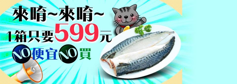 挪威薄鹽鯖魚片整箱只要599元