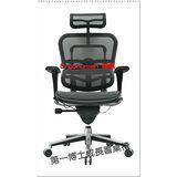 【第一博士】Ergohuman 111九大微調高級電腦椅