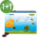 【家倍健NatureMax】陳德容代言專利山桑子葉黃素複方軟膠囊(30粒/盒)買1送1