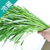 產銷履歷空心菜1袋(250g±5%/袋)