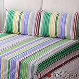 【AmoreCasa】虹彩。加大三件式精梳棉床包組-綠