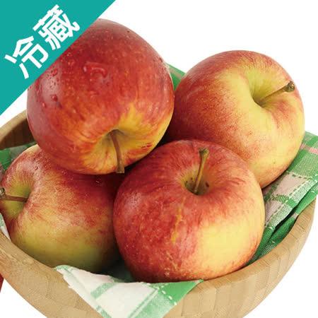 紐西蘭富士蘋果 90