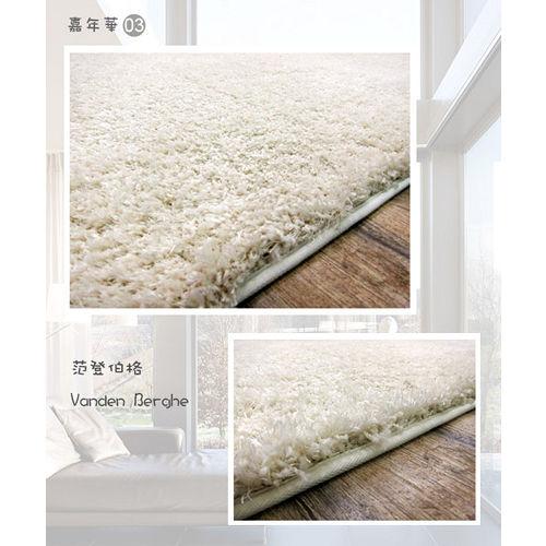 【范登伯格】嘉年華☆居家美學長毛地毯-白色(140x200cm)