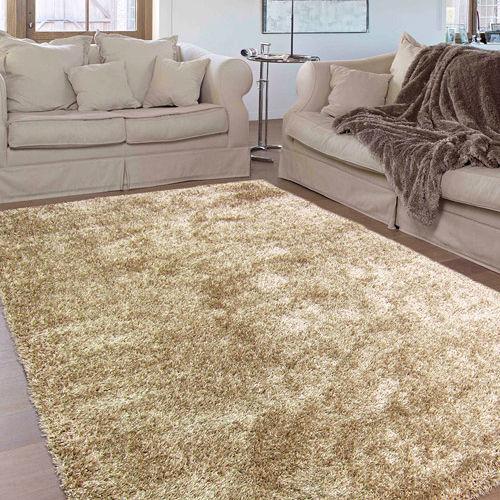 【范登伯格】嘉年華☆居家美學長毛地毯-棕色33(160x240cm)
