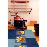 【范登伯格】風雲手工立體剪花地毯-采菊-160x230cm