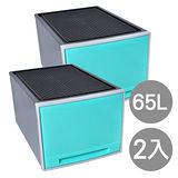 【經典好用】個性粉彩單層收納整理箱(65公升) 2入組