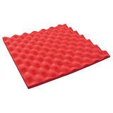 收藏家EVAZOTE 安全環保無毒保護軟墊-電子防潮箱配件(法拉利紅)