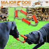 德國Major dog《四節拉環 - 小》互動訓練玩具 (MD-31016)