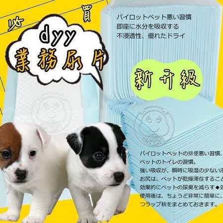 dyy經濟包 抗菌除臭尿布墊6包組