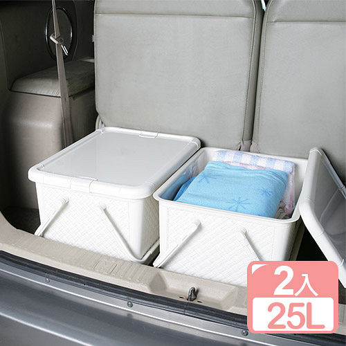 《真心良品》藤蔓風手提整理箱25L(2入)