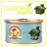 【御香坊California Scents】北極冰涼 ARCTIC ICE 淨香草