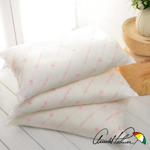 【Arnold Palmer雨傘牌】保暖發熱枕2入