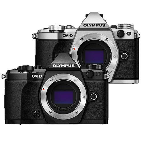 OLYMPUS OM-D E-M5 Mark II 單機身組(公司貨)-加送128G記憶卡+原廠電池+快門線+大吹球清潔組+專用拭鏡筆+單眼專用皮質手腕帶