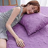(任)J-bedtime【蝶舞飛揚】雙人絕美壓紋X防汙防塵床包式保潔墊(深紫蝶)
