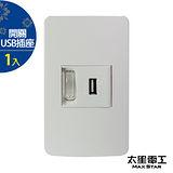 【太星電工】聯蓋帶開關-USB單插座(1入) A414D