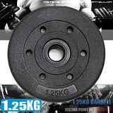 1.25KG水泥槓片C113-B2015