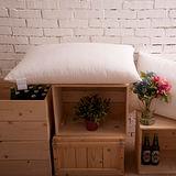 BBL 超彈力柔適枕(一對)