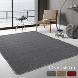 范登伯格 華爾街☆簡單的地毯-105x156cm