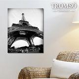 TROMSO時尚無框畫/艾菲爾鐵塔(小)