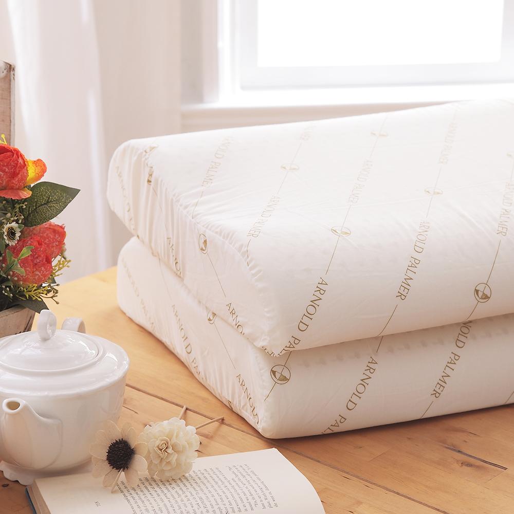 HO KANG 專櫃 Arnold Palmer人體工學乳膠枕
