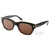 TOM FORD太陽眼鏡 007丹尼爾克雷格電影配戴款(深邃琥珀-黑) #TOM237 05J