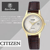 CITIZEN Eco-Drive 簡約大三針羅馬字體女用腕錶-金框/28mm/FE1082-13A